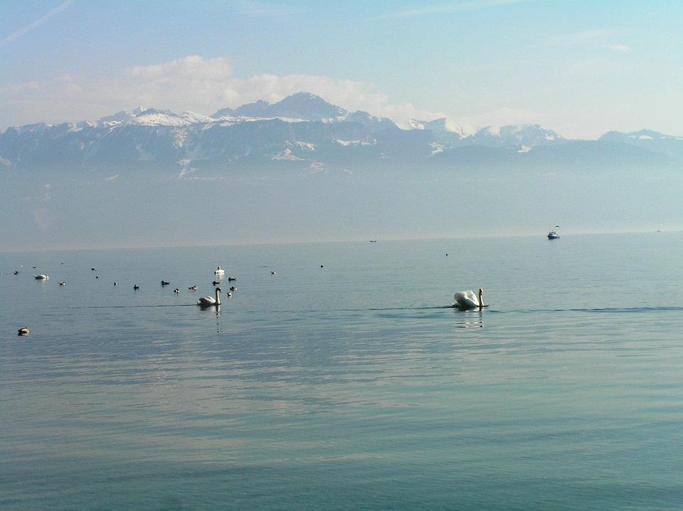 szwajcarskie krajobrazy: góry i jeziora